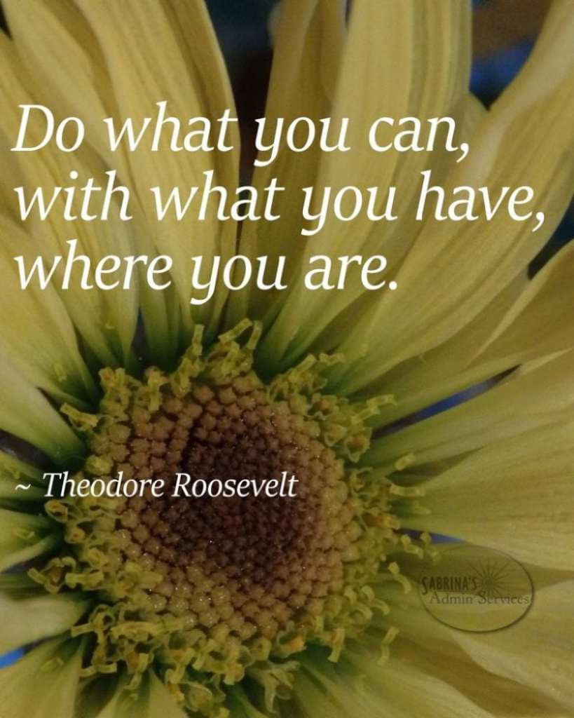 Theodore Roosevelt do what you can quote