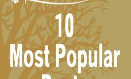 Sabrina's Admin Services Top 10 Most Popular Posts in 2017
