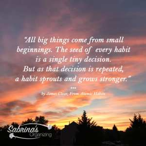 All big things come from small beginnings. The seed of every habit is a single tiny decision. But as that decision is repeated, a habit sprouts and grows stronger. - James Clear from Atomic Habits