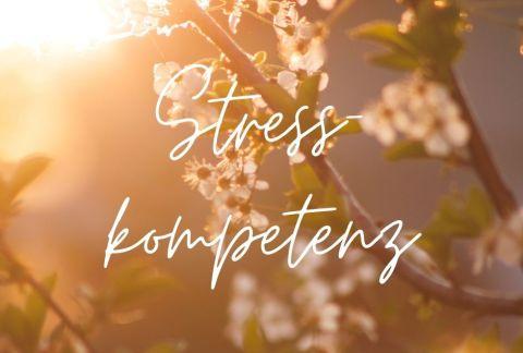 Fühlst du dich dem Stress hilflos ausgeliefert?