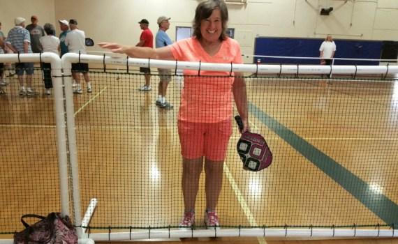 Ball Divider Fence