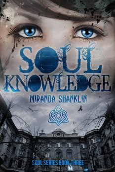 soulknowledge-shanklin-ebook