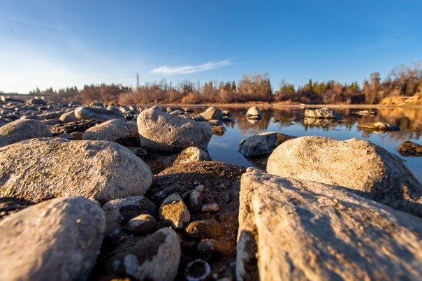Drought conditions on the American River