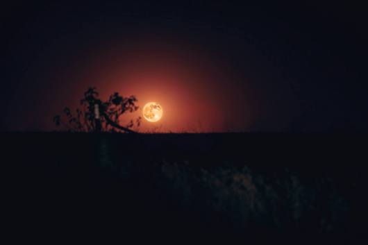 A 'honey moon' one of the largest and brightest harvest moons shines over Sacramento.