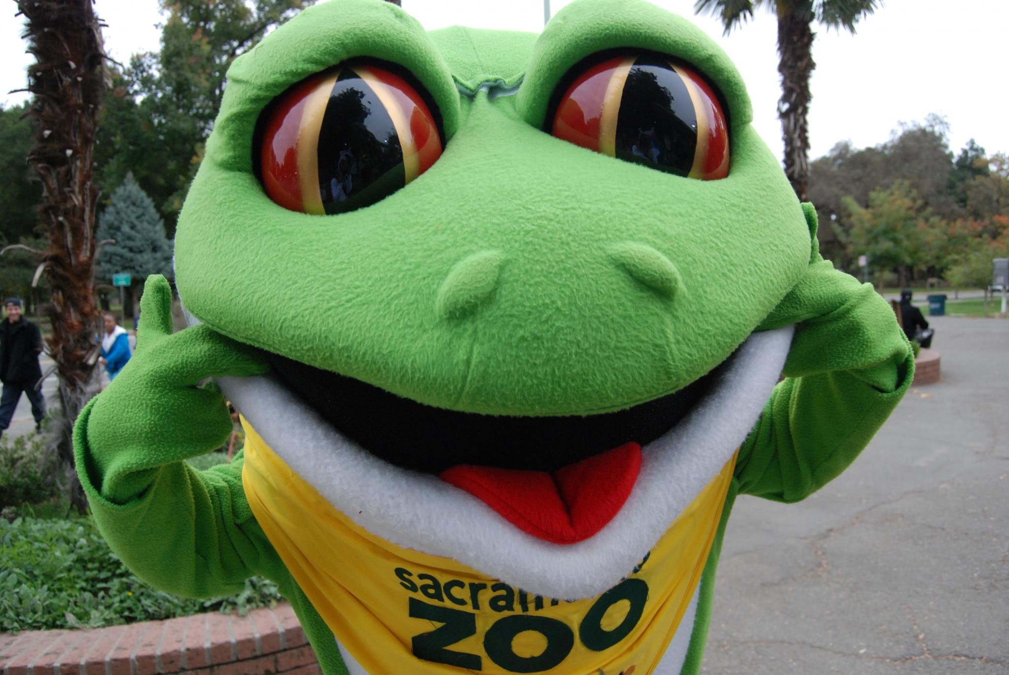 Green is as Good as Gold: Zoo Hosts Recycle Rummage Sale via @sacramentopress