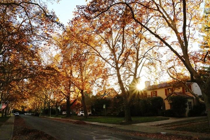 Fall in Sacramento 2017 7 720x480 - Sacramento: Best City in California for Fall Colors?