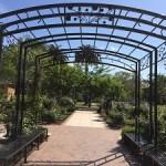 Picture of McKinley Park Rose Garden