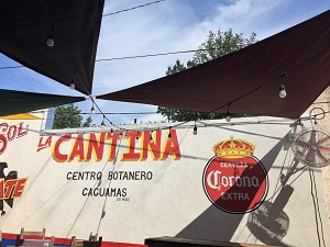 Picture of Cantina Alley Interior
