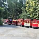 Sacramento Zoo – Sacramento Attractions