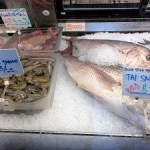 Picture of Sunh Fish Company Fish