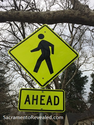 Photo of Crosswalk Ahead Sign - Dangerous by Design