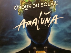 Photo of Amaluna Poster