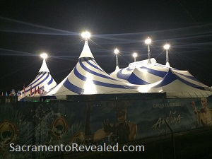 Photo of Amaluna Tent