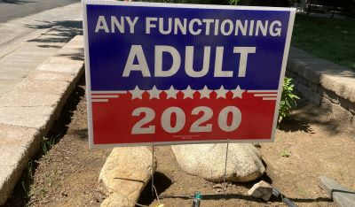 Photo of Any Functional Adult Sign - 2020 in Sacramento