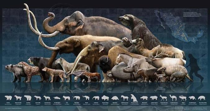 Pleistocene_Megafauna