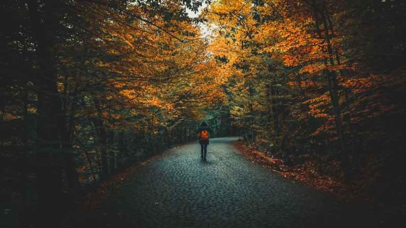 Autumn Equinox Traditions