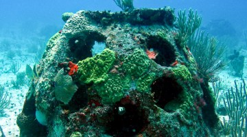 Eternal-Reefs-burial-at-sea-reef-ball-1Eternal-Reefs-burial-at-sea-reef-ball-1