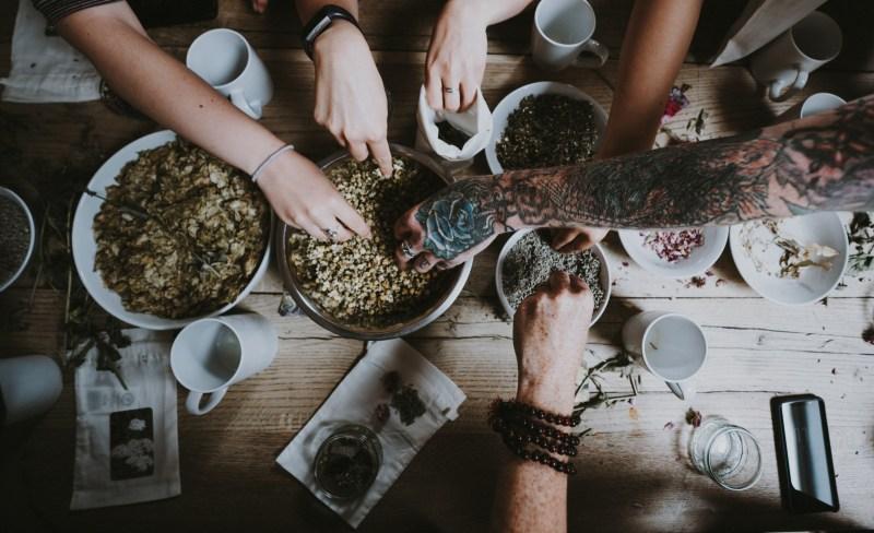 online herbal medicine courses