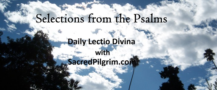 Blog & Podcast – Sacred Pilgrim Spiritual Direction