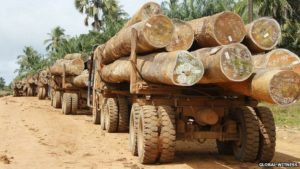 Liberia deforestation