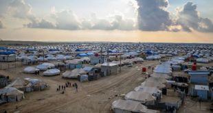 390 طفلًا توفّوا في مخيم الهول بسبب سوء التغذية ونقص العلاج