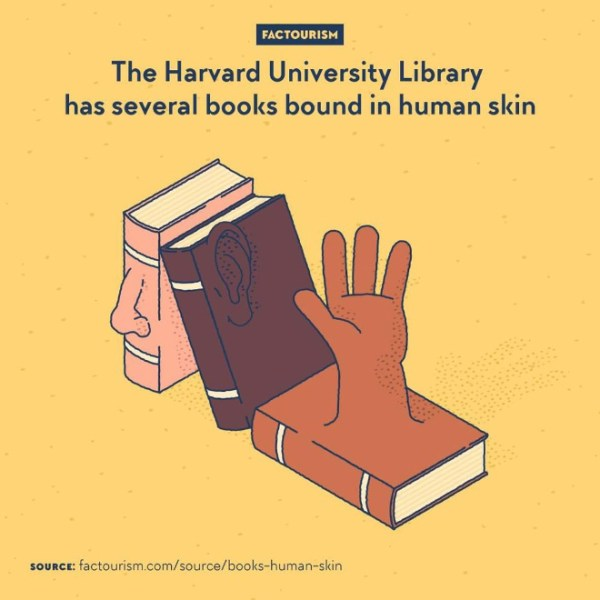Anthropodermic bibliopegy. That is the proper name for binding books with human leather rather than another animal's. A morbid practice that was occasionally done in the 19th century and earlier. Some of the resulting books are now conserved in the Harvard Library at Harvard University.⁠