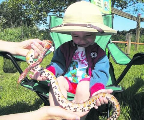 Children enjoying themselves at Saddleworth Stars