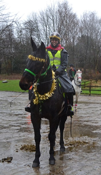 Helen Taylor on Napoleon, the UK's tallest mule, at the Horseman's Carol Service