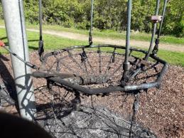 Lees Park arson attack (2)