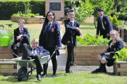RHS School Gardening Team of the Year 2018 - St Gregory's Catholic Science College (2)