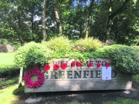 Poppies displays mark start and finish of Second World War