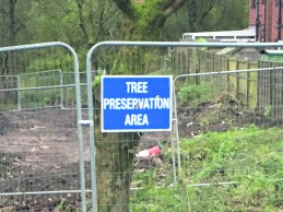 Tree preservation area