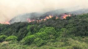 blaze on fire