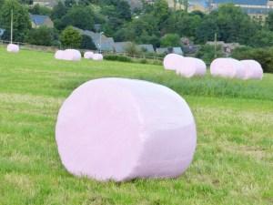 p9 pink hay bales2