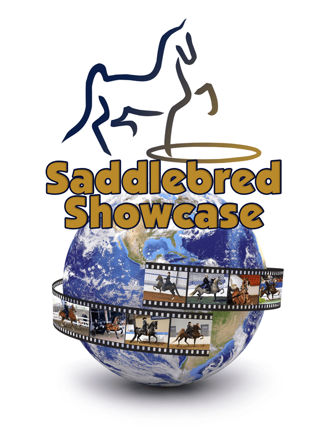 Saddlebred Showcase
