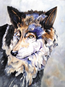 Art by Sue Wilson
