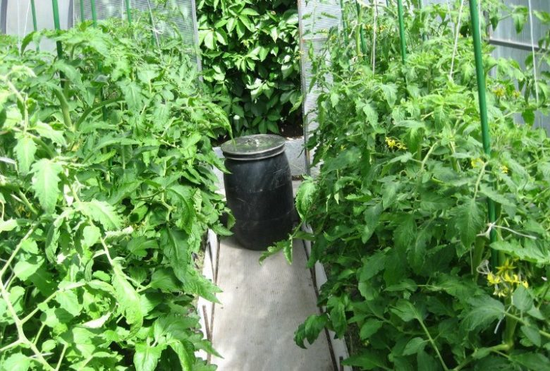 Improvement of gas exchange in greenhouse