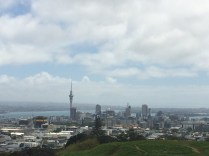 View of Auckland's skyline from Mount Eden