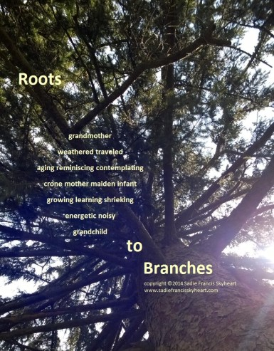 Roots to Branches
