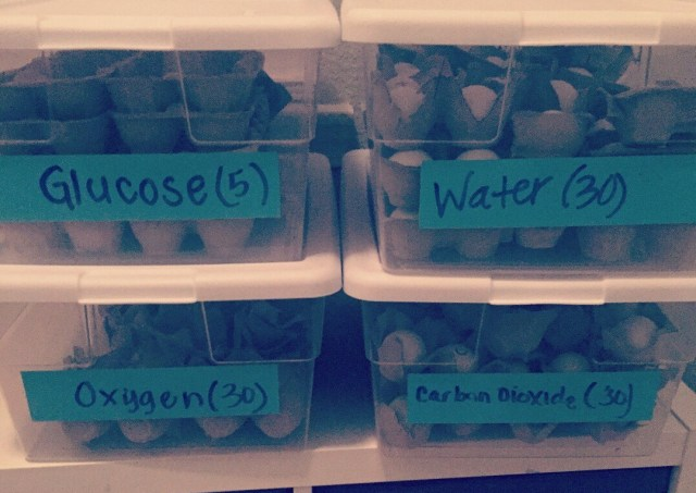 Storage containers with blue dry erase tape.