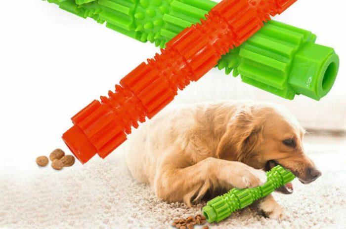 Tandpetare för hundar