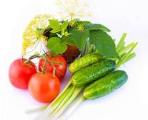 Тепличные хозяйства Беларуси