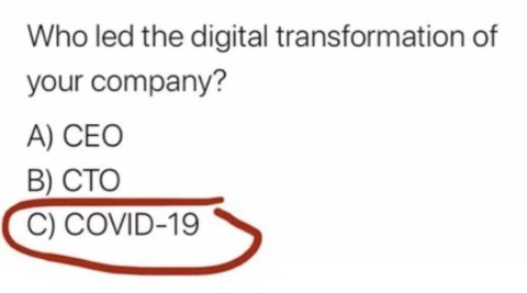 Wer leitete die digitale Transformation Ihrer Firma ein?  CEO CTO COVID-19