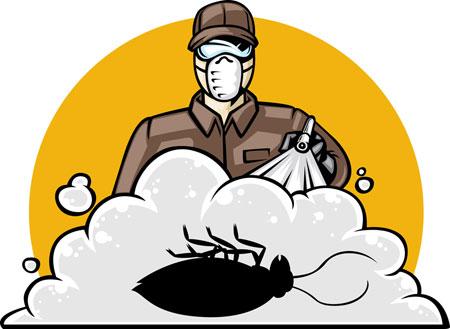 شركة-رش مبيدات-بتبوك
