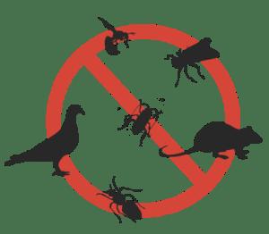شركة-رش-مبيدات-بتبوك