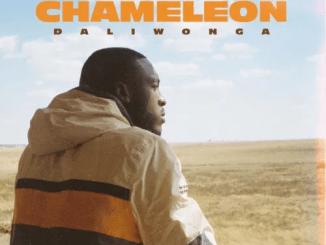 Daliwonga Chameleon Album Zip File Download