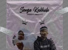 Joe King Senza Kakhulu ft Flash Ikumkani Mp3 Download Safakaza