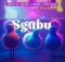 Shuffle Muzik Sgubu Mp3 Download Safakaza