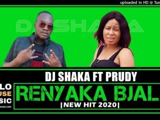 DJ Shaka – Ramaphosa Renyaka Bjala