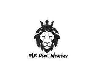 Mr Dlali Number – Ndiphuma Ndedwa